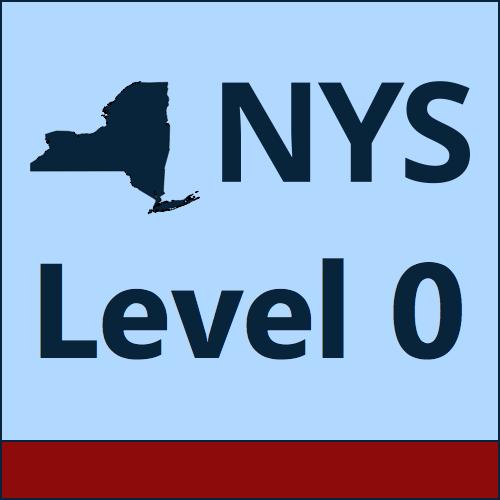 NYS Level 0 logo