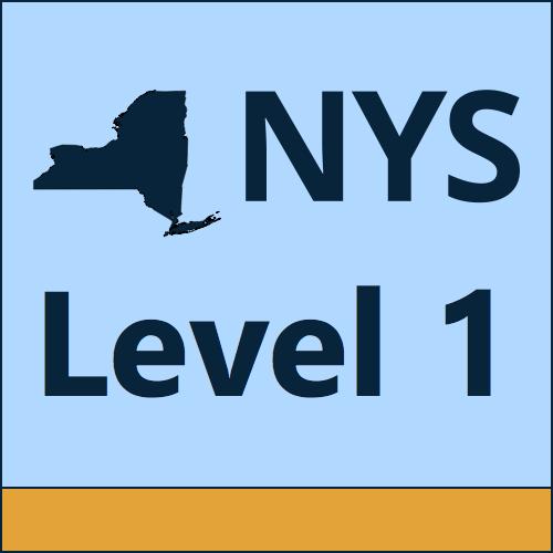 NYS Level  logo