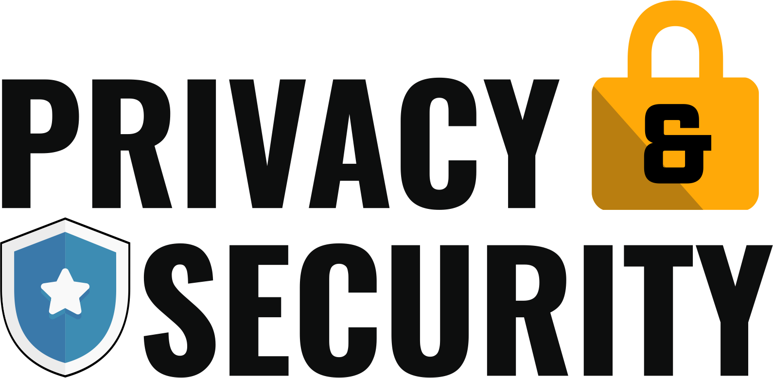 Privacy & Security logo