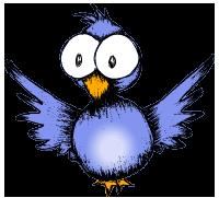 Silly birdie