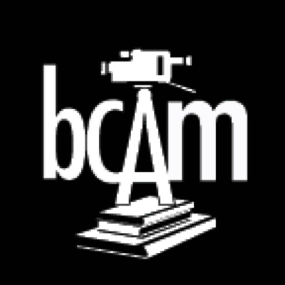 Brooklyn Community Arts & Media High School Home Page