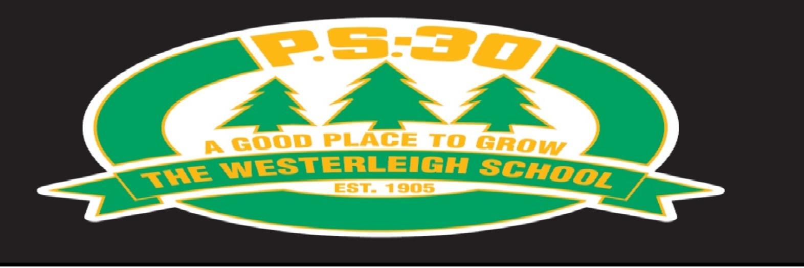 Fifth Grade Math - PS30 (31R030) Westerleigh
